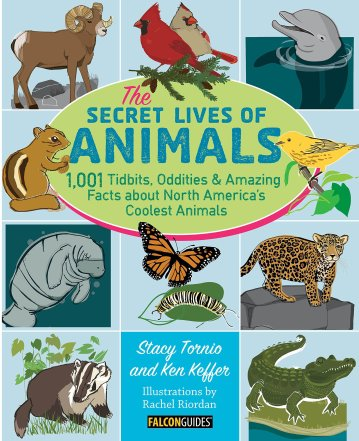 secret lives of animals