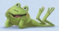 frog laying