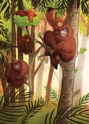 ReneeK_Orangutanka_6