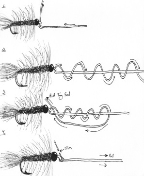 Clinch Knot Drawing