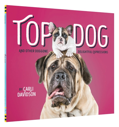 top-dog_fc-3d